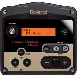 Módulo Roland TM 2